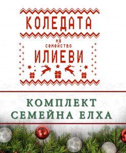 Коледата на семейство